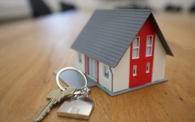 What will happen to property prices if we continue along our economic decline?